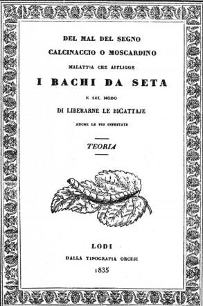 llibre de Bassi sobre malaltia dels cucs de seda