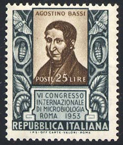 segell Bassi